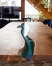 Skaidrus epoksidas - tinkamas stalams gaminti